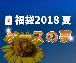ダーツ福袋2018夏 ~ケースの夢~