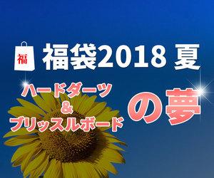 ダーツ福袋2018夏 ~ハードダーツ&ボードの夢~
