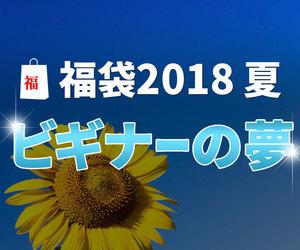 ダーツ福袋2018夏 ~ビギナーの夢~