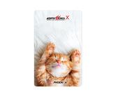 ゲームカード【フェニックス】フェニカ NO.2073 子猫
